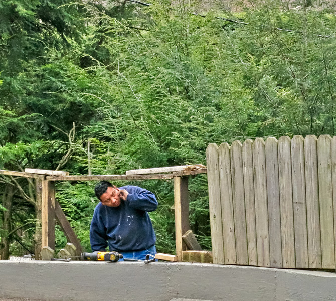 Worker replacing roadside fence on Longridge Road