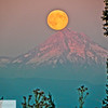 Blue moon over Mt. Hood