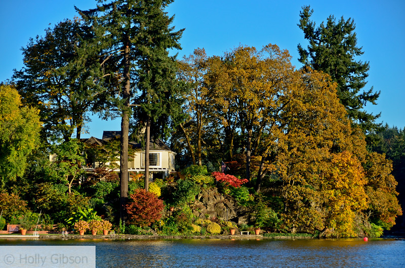 View from Lake Oswego
