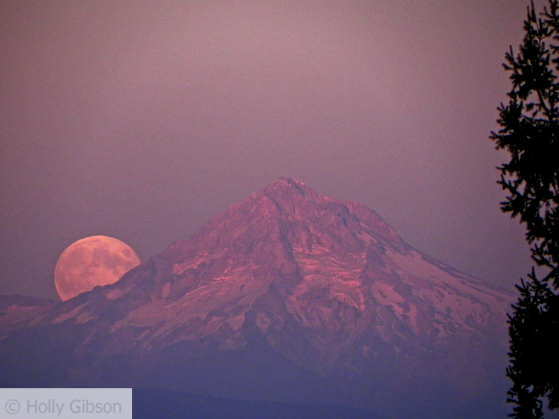 Blue moon over Mt. Hood