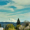 Mt. Hood from Highway 43/West Linn