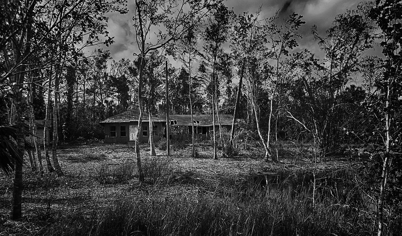 Abandoned in-dwelling on the Tamiami Trail in Big Cypress National Preserve