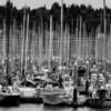 Shilshole Marina