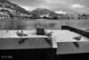 Bergen 24.november