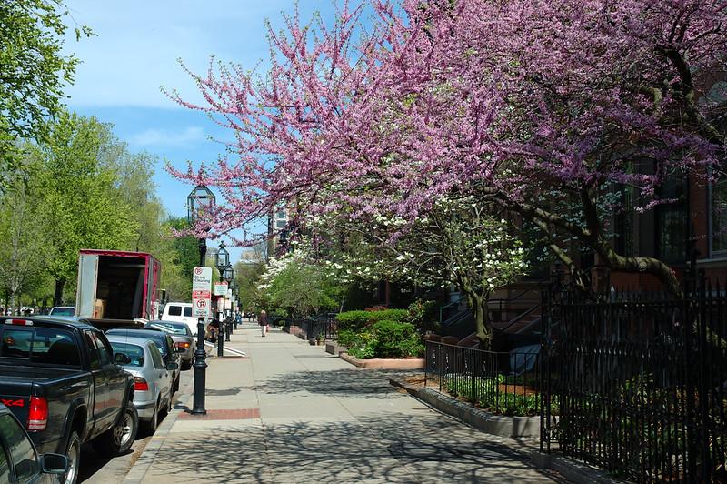 Commonwealth Avenue.
