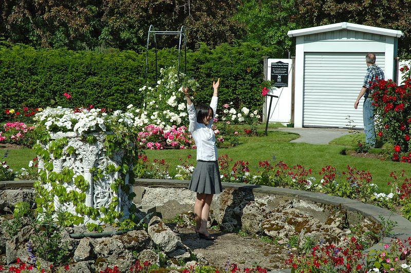 Back Bay Fens<br/> Rose Garden (2