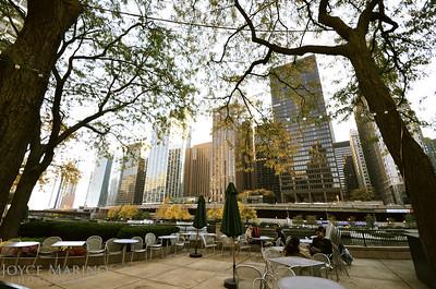Downtown Chicago, DSC_3376