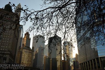 Downtown Chicago, DSC_3392