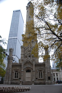 Downtown Chicago.  DSC_0245