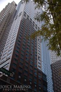 Downtown Chicago.  DSC_0267