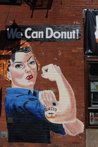 This mural, for the Donut shop, sits across from the North and Damen Avenue El Stop. It is photograhed by almost every young woman who gets off the El.