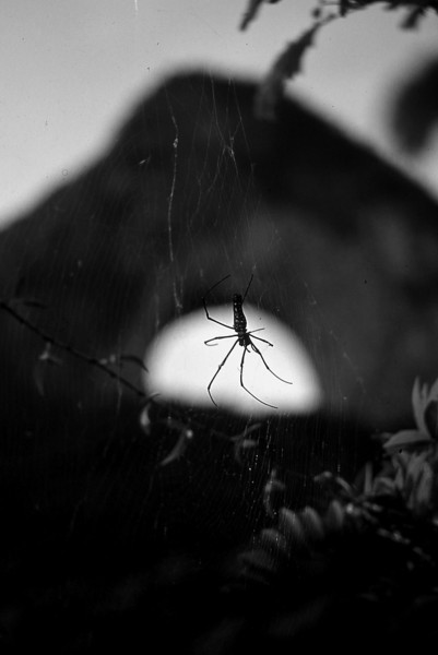 321  Yangshuo - Spider at Moon Hill