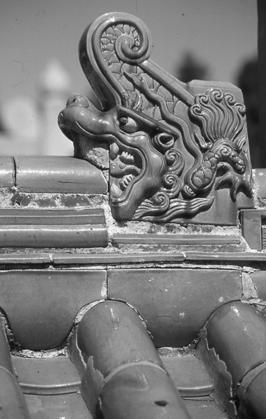 104  Beijing - Temple of Earth, detail roof
