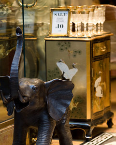Elephant in a china shop.