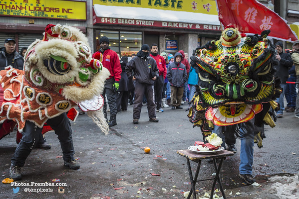 Celebrating the Year of the Horse 2014
