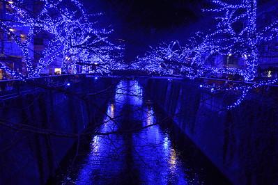 Christmas Lights at Meguro River