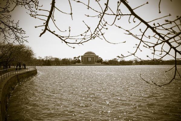 Jeff's Pond
