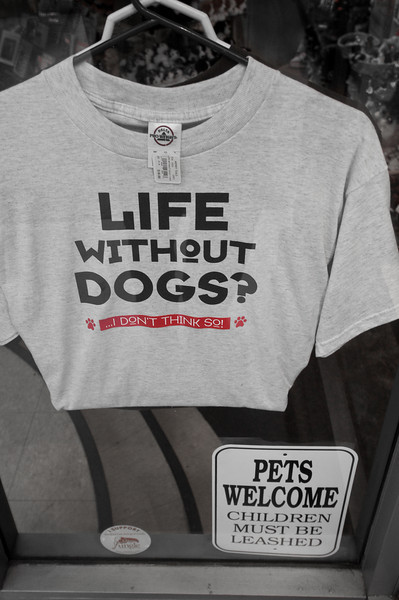 Life Without Dogs