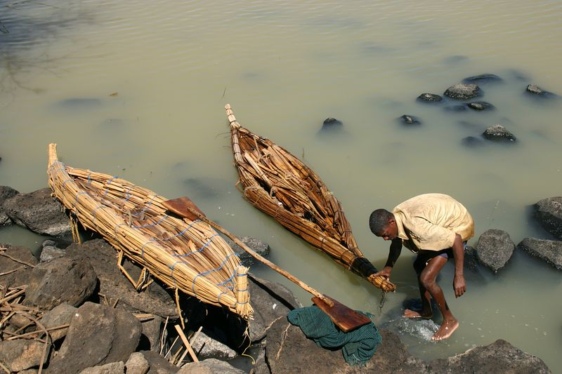 fisherman lands his reed boat on dek island, lake tana, ethiopia
