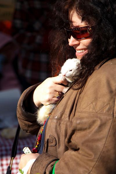 Cat.#0149 - Ferret Fan. Farmers Market. Downtown Austin, TX.