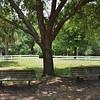 Turkey lake park, Florida