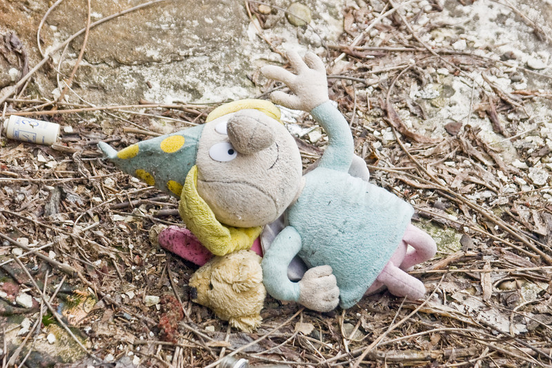 Discarded Toys