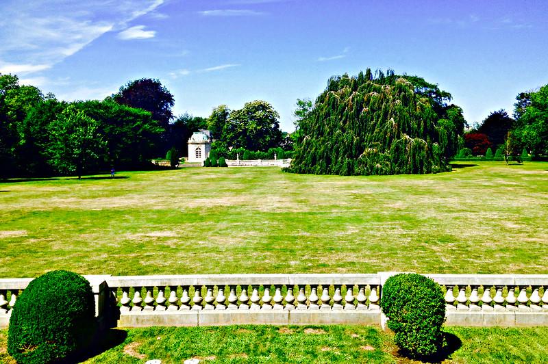 Backyard of The Elms.