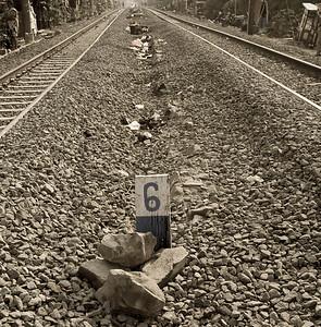 0702-JKT-Rail-Fish-Vil-Life-2