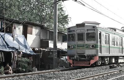 0702-JKT-Rail-Fish-Vil-Life-3