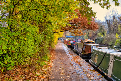 Tow path in autumn