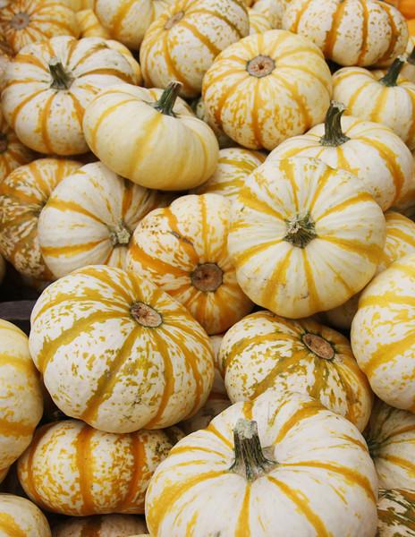 Autumn feel at the Kirkwood Farmer's Market