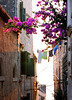 Korcula town - bouganvillia, washing and shutters