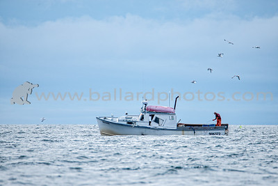 Bucko Lobster Boat, off the coast of Portland, Maine