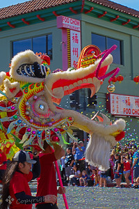 "Parade Dragon ~ This was one of the larger dragons in the parade in Chinatown in LA.  The crowd is looking on, and using ""poppers"" filled with confetti."