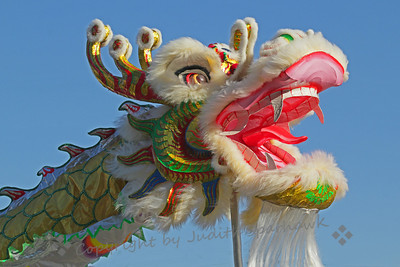 Year of the Dragon ~ I went to Chinatown in Los Angeles yesterday for the Chinese New Year's Festival and parade.  Being Year of the Dragon, there were many dragons featured in the parade.  This was one of my favorites.