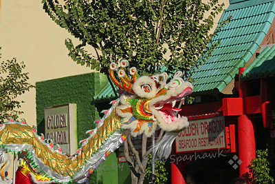 Golden Dragon at the Golden Dragon