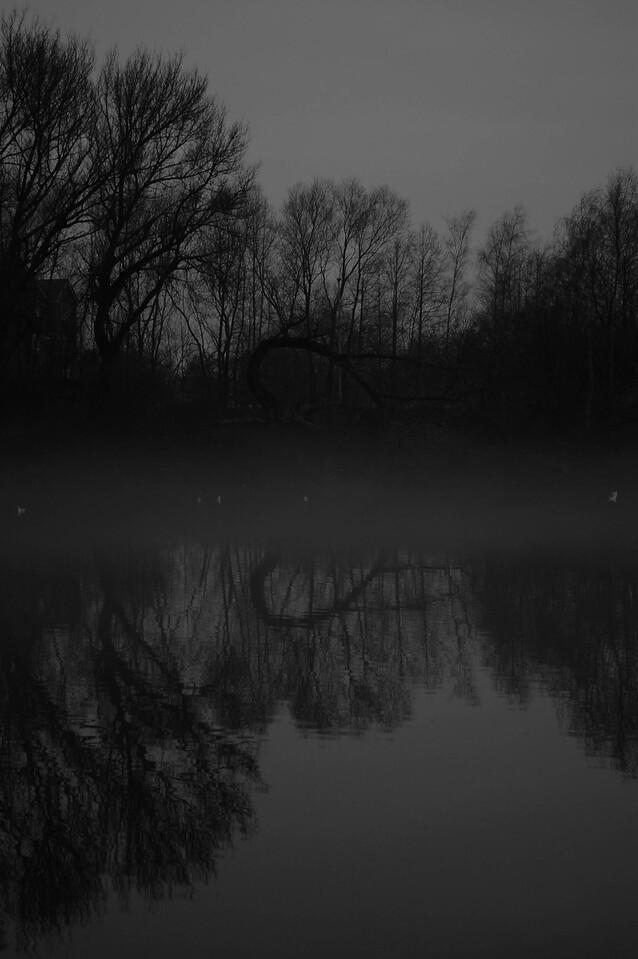 Ship Canal Mist