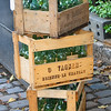 Crates of Green Bottles<br /> Paris<br /> By: Kimberly Marshall