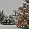 Cortes Christmas 2012_0240