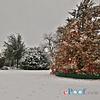 Cortes Christmas 2012_0241