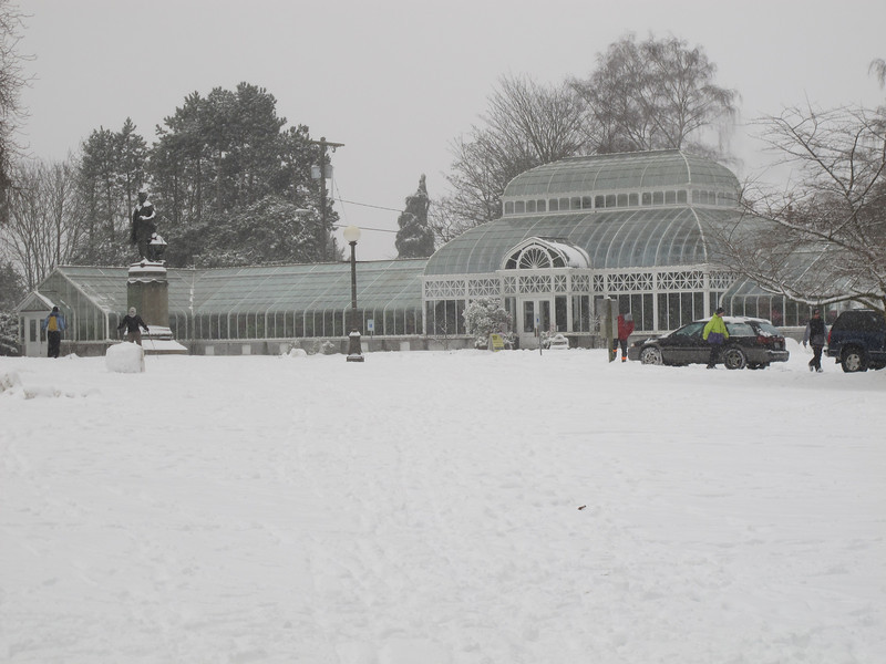The Conservatory in Volunteer Park - right across the street from my apartment building.