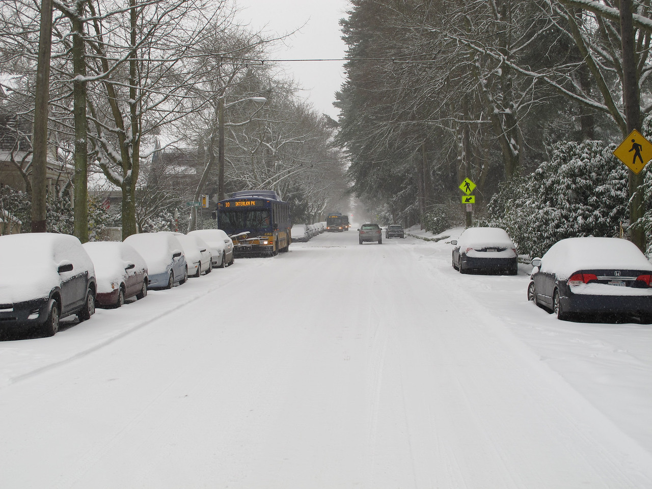 My street. The busses were backed up because a bus spun out down the street.