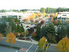 View across 156th Ave from our 6th floor office