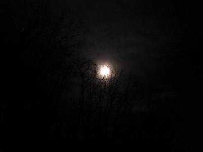 Moonlight 1/1/2015