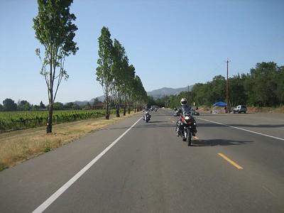 Calistoga 2008