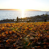 Sunset at English Bay on a beautiful fall day.