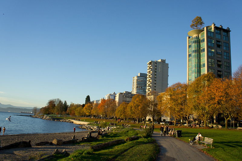Fall colours at English Bay.
