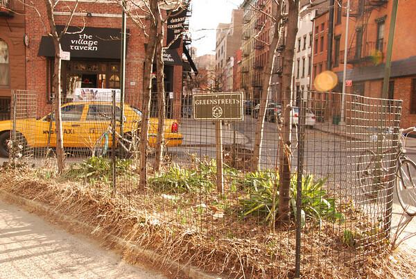 NYC Greenspace