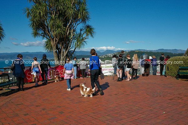 Wellington street scene, people out enjoying sunny weekend.  Model released; no, for editorial & personal use.
