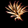 fire works-7